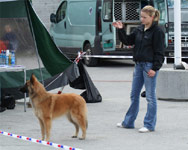 "Me and Roma in the ring... Thank you Per Arne Løvstad (owner of Chevy's Kahron) for ""stealing"" my camera ;o)))))"